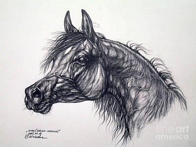 Arabian Horse  Art Print by Angel  Tarantella