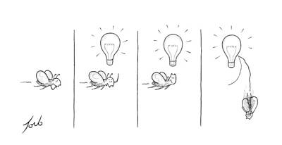 Moth Drawing - New Yorker February 21st, 2014 by Tom Toro