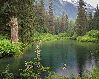 Usa, Alaska, Tongass National Forest Art Print