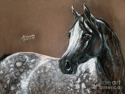 Arabian Horse Art Print by Angel  Tarantella