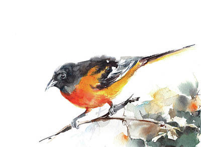 Oriole Painting - Bird by Sophia Rodionov