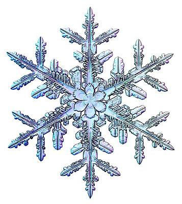 Snowflake Art Print by Kenneth Libbrecht