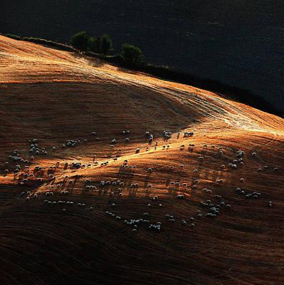 Tuscany Italy Photograph - Untitled by Massimo Della Latta