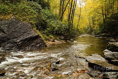 2725 Looking Glass Falls Art Print by Stephen Parker