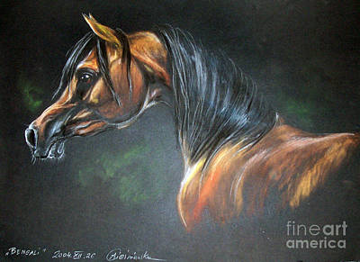 Arabian Horse  Art Print