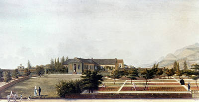 Napoleon Bonaparte (1769-1821) Art Print