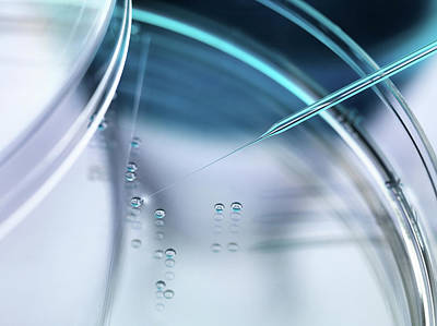 Stem Cell Research Art Print