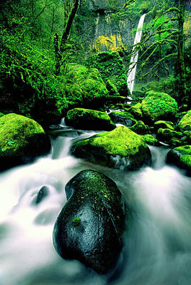 Elowah Photograph - Usa, Oregon, Columbia River Gorge by Jaynes Gallery