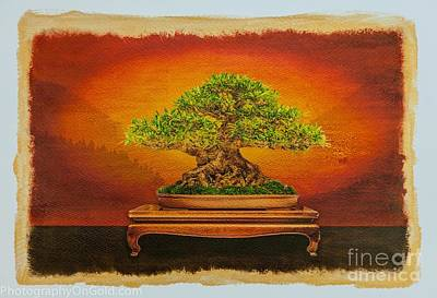 Gold Tone Photograph -  Limited Edition  Bonsai Tree Aaron Buchler Willow Leaf Fig On Iridescent Gold by Jim Swallow