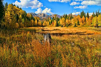 Photograph - Autumn Splender by Mark Smith
