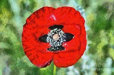 Painting - Poppy Flower by George Atsametakis