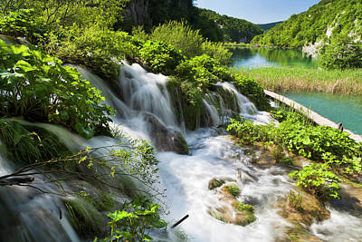 Effervescent Photograph - The Plitvice Lakes In The National Park by Martin Zwick