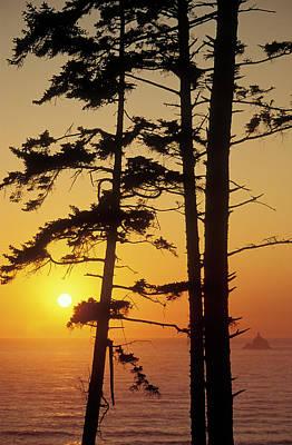 Tillamook Rock Lighthouse Photograph - United States by Greg Vaughn