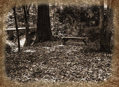 Photograph - A Shady Resting Place-sepia  by Judy Vincent