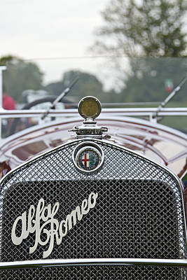 Sean Rights Managed Images - 1931 Alfa Romeo Royalty-Free Image by Jack R Perry