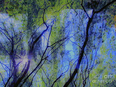 Photograph - Abstract Forest by France Laliberte