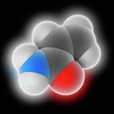 Acrylamide Molecule Art Print by Laguna Design