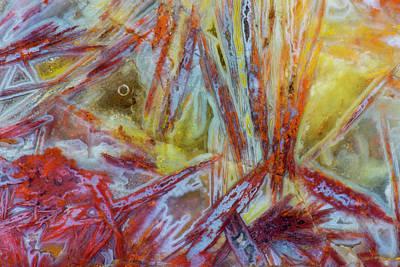 Agate In Colorful Design, Sammamish Art Print