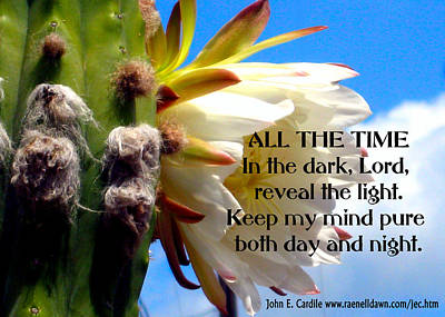 Poetry Photograph - All The Time by John E Cardile
