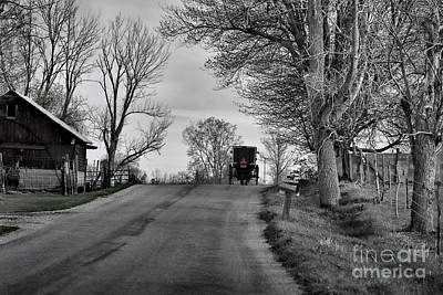 Photograph - Amish Buggy Black And White by David Arment