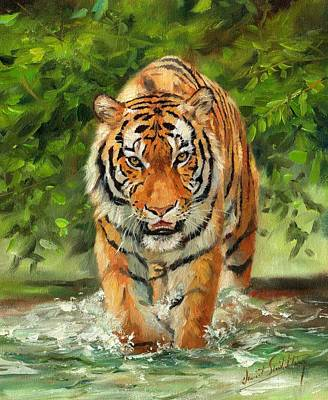 Animals Paintings - Amur Tiger Painting by David Stribbling