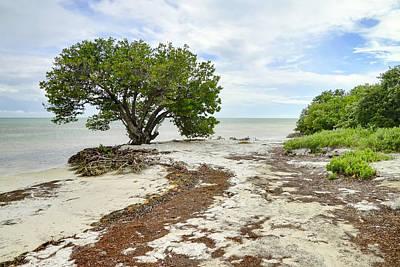 Photograph - Anne's Beach-3 by Rudy Umans