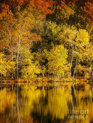 Radnor Lake Photograph - Autumn Color by Brian Jannsen