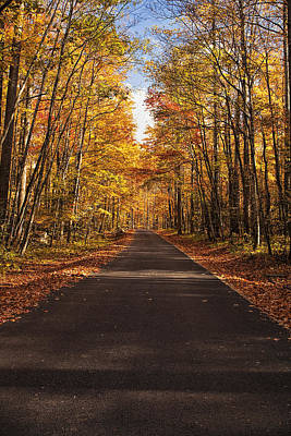Golden Photograph - Autumn Drive by Andrew Soundarajan