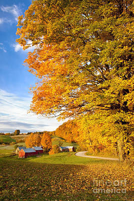 Photograph - Autumn Farm In Vermont by Brian Jannsen