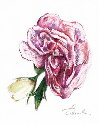 Blossom Art Print by Danuta Bennett