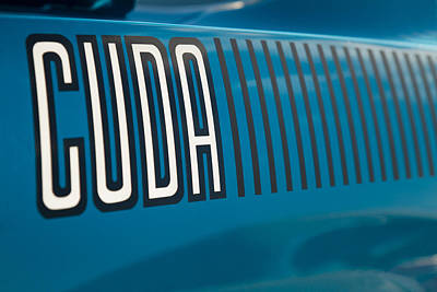 Photograph - Blue Fire Cuda by Ron Pate