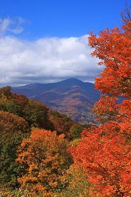 Blue Ridge Fall Art Print by Mountains to the Sea Photo