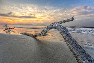 Photograph - Bough In Ocean by Peter Lakomy
