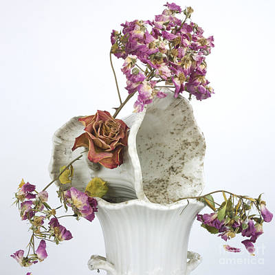 Floral Photograph - Bouquet by Bernard Jaubert