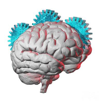 Brain Function, Conceptual Artwork Art Print by Laguna Design