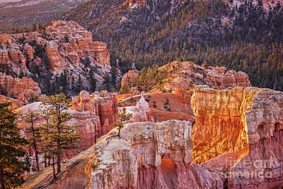 Photograph - Bryce Canyon Utah Usa by Colin and Linda McKie