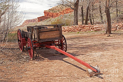 Photograph - Buckboard Pipe Spring National Monument by Fred Stearns