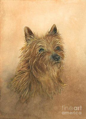 Painting - Cairn Terrier Dog by Nan Wright