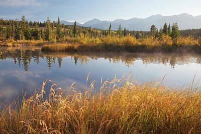 Sloughs Photograph - Canada, Alberta, Jasper National Park by Jaynes Gallery