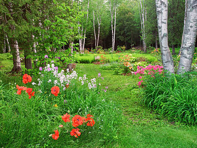 New Brunswick Photograph - Canada, New Brunswick, Garden And Forest by Jaynes Gallery