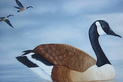 Painting - Canadian Goose by Christine McMillan