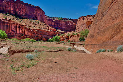 Photograph - Canyon De Chelly by Dany Lison