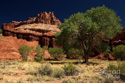 Photograph - Capitol Reef Castle by Adam Jewell