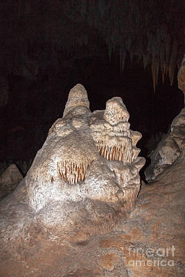Photograph - Carlsbad Caverns National Park by Fred Stearns