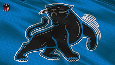 Panthers Photograph - Carolina Panthers Uniform by Joe Hamilton