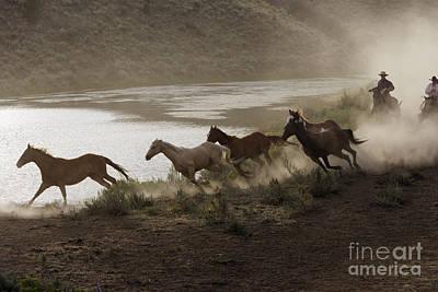 Working Cowboy Photograph - Cattlemen Herding Quarter Or Paint by M Watson