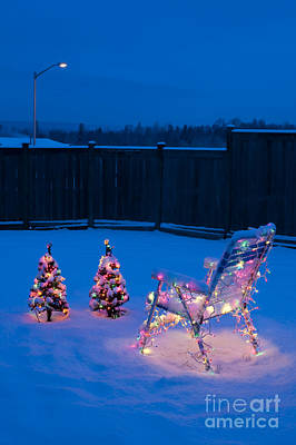 Christmas Lights On Trees And Lawn Chair Print by Jim Corwin