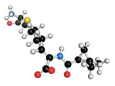 Cilastatin Molecule Art Print by Molekuul