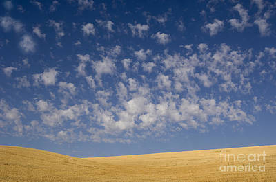 Photograph - Clouds And Field by John Shaw