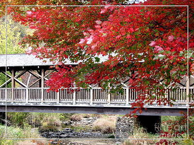 Photograph - Covered Bridge At Allegany State Park by Rose Santuci-Sofranko